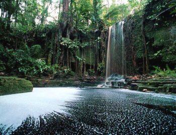 'Suriname hotspot van 2010'