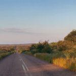 Je eigen ecolodge in Zuid-Afrika?
