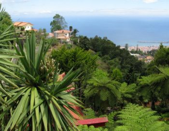 Overstromingen op Madeira (video)
