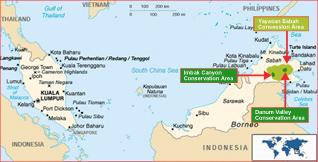 bosbouw maleisie