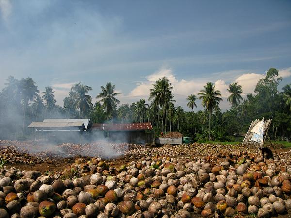 Biogas in Cambodja