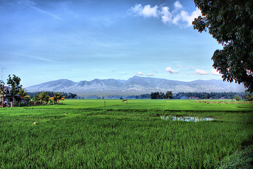 Mount Malindang op de Filippijen