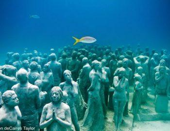 La Evolucion Silenciosa Cancun