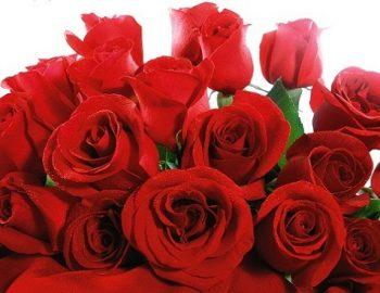 Verbod op Valentijnsartikelen