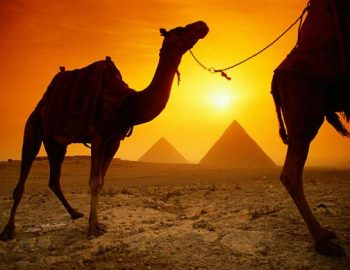 Top 5 Egypte tips