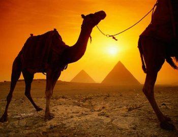 Top 5 Egypte tips