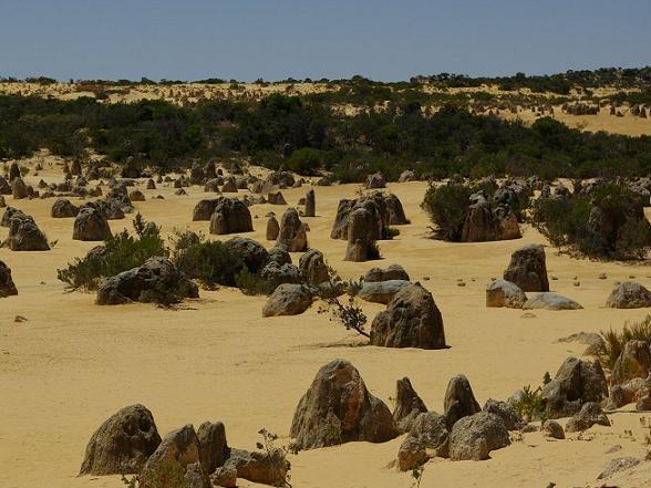 De Pinnacles zijn gelegen in het Nambung National Park, vlakbij Cervantes ten noorden van Perth