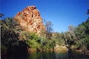 Palm Spring, vlakbij Hall's Creek, Kimberley