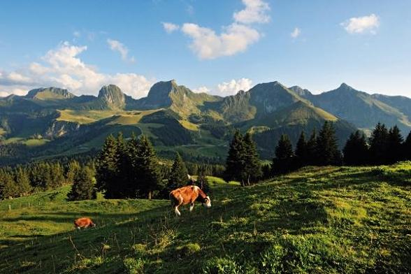 Droombanen in Zwitserland Graubünden