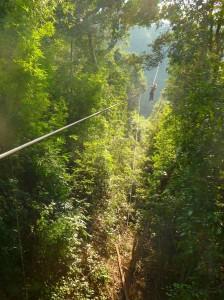 Ik doe even mijn ogen dicht, neem een aanloop en daar ga ik! Even denk ik dat het niet zo hoog is, totdat het struikgewas wegvalt en ik gewoon op zestig meter boven de boomtoppen suis!