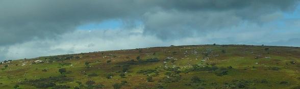 Heuvel in Dartmoor, Engeland