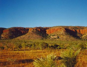 The Kimberley Heritage Cattle Drive