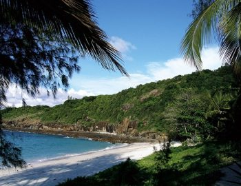 Treasure Island: Madagascar!