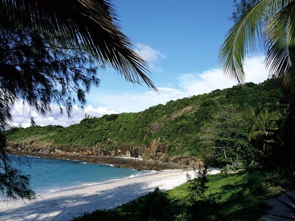 Tussen 1999 en 2010 zijn op het eiland Madagaskar ruim 600 nieuwe plant- en diersoorten ontdekt. De spectaculaire vondsten zijn door verschillende internationale wetenschappers gedaan. Het eiland biedt onderdak aan ruim 5 procent van alle voorkomende plant- en diersoorten op aarde. Daarvan komt ruim 75 (!) procent nergens anders ter wereld voor dan op Madagaskar.