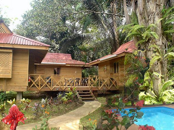 Hotel El Mono Feliz bestaat uit vijf standaardkamers en drie cabañas. Dat zijn leuke houten huisjes met een slaapkamer, een badkamer en een keuken er in. De cabañas liggen in de schaduw van grote palmbomen in onze achtertuin, je komt er via een bruggetje over een beek.