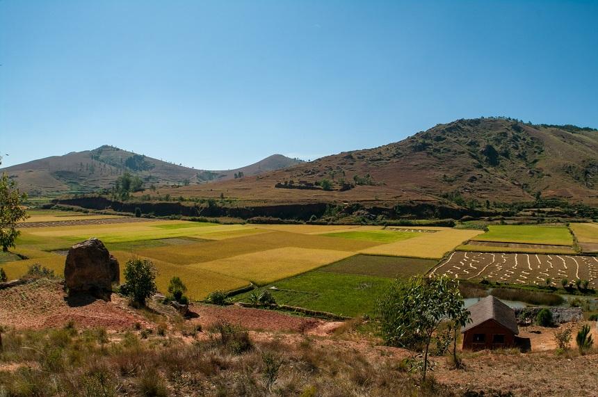 landbouw madagaskar