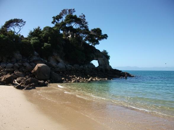 Kajakken in Abel Tasman: zeesterren en mosselen op de rotsen
