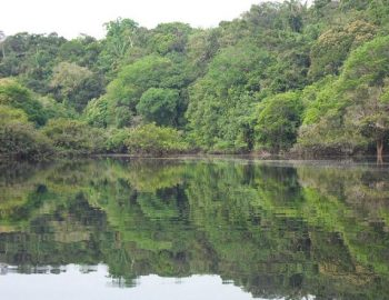 Street View voor Amazonegebied