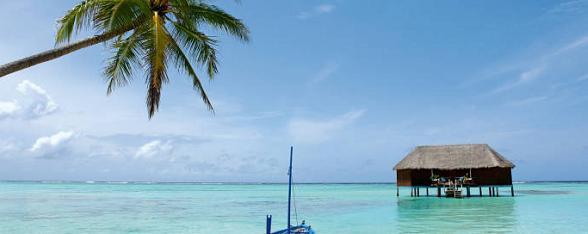 Wie Malediven zegt, denkt aan oogverblindend witte stranden, een oneindig blauwe lucht, wuivende palmbomen en glashelder water met een azuurblauwe kleur. Voor duikers is dit het mekka, de rijke onderwaterwereld biedt fraaie koraalriffen en een enorm scala bont gekleurde koraalvissen, zeesterren en ander dergelijk moois.