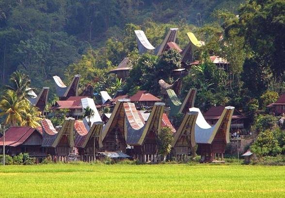 Op Sulawesi kun je kennis maken met de animistische godsdienst van de Toraja, gekenmerkt door dodenpoppen in rotswanden en rotsgraven, indrukwekkende begrafenisrituelen, tau tau poppen en de prachtige Tongkonan huizen.