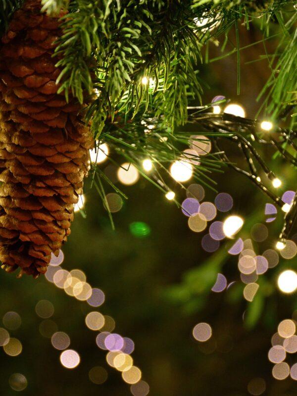 kerstmis in de elzas