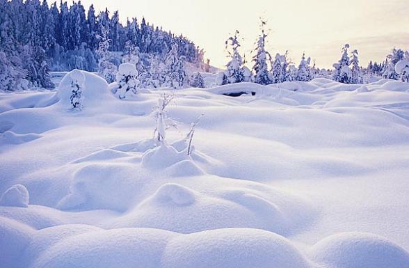 Daarnaast leent het land zich uitstekend voor een wintersportvakantie in Lapland waar men zich te goed kan doen aan skien, huskytochten en andere sneeuwactiviteiten door het prachtige wit besneeuwde land.