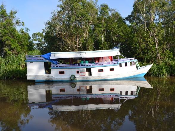 klotok Kalimantan