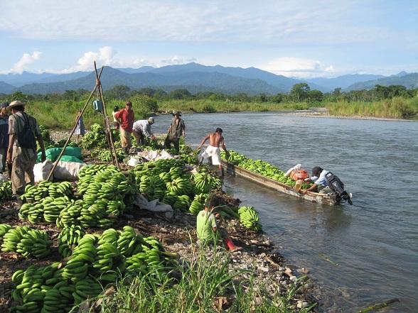 In het Talamanca gebergte leven nog zo'n 7.000 Bribrí- en Cabécar-indianen. In het zuiden van Costa Rica, hoog boven de Térraba-vallei, leven ongeveer 3.000 Boruca- en Térraba-indianen. De 5.000 Guaymi wonen in het hart van het schiereiland Osa.