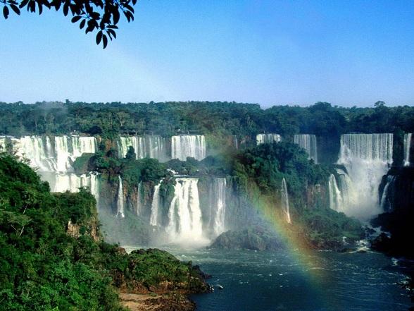 Amazone regenwoud