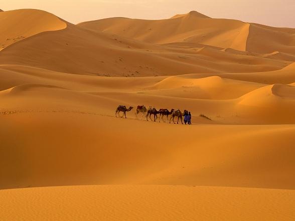 De Sahara is de grootste zandwoestijn op aarde