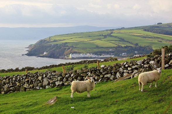 Northern-Ireland, south of Ballycastle. Torr Head area