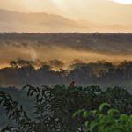 De Boliviaanse Amazone