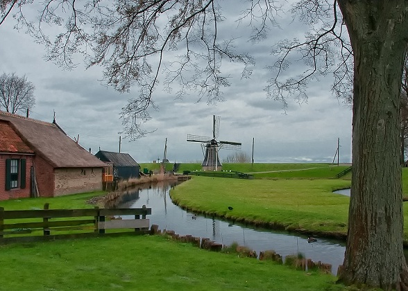 Het Nederlands polderlandschap