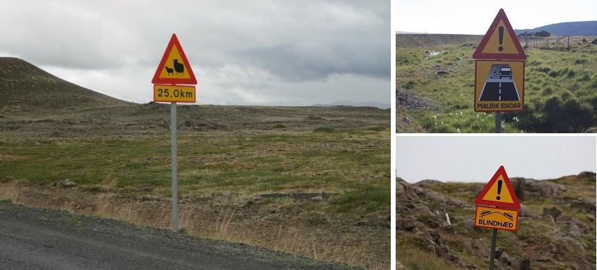 bijzondere verkeersborden ijsland - Blindhæd, Malbik endar en overstekende schapen