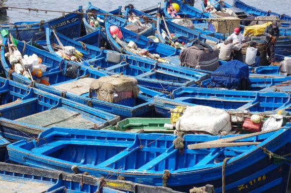 Karakteristieke blauwe bootjes in de haven