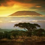 Gevarieerd Kenia