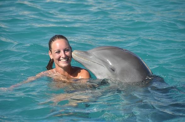 Dolfijnzwemmen Curacao
