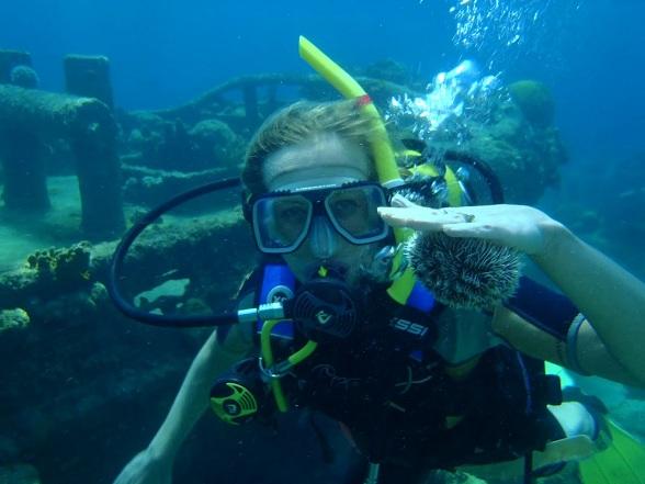 Het is een enorm populaire locatie onder zowel duikers als snorkelaars, met interessante fotografiemogelijkheden en een behoorlijke variatie in duikopties: wand, wrak en diep. Tugboat ligt aan de beschermde zuidoostkant van Caracasbaai en is bereikbaar per boot