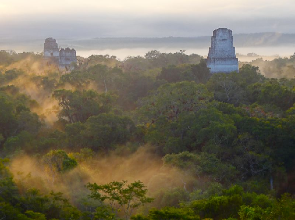 Mist Tikal