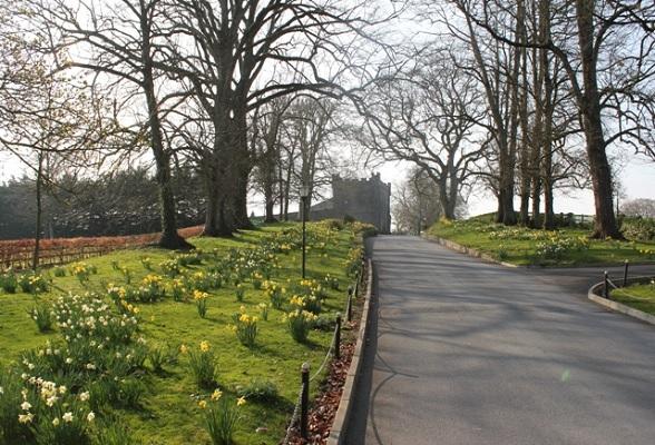 De oprijlaan van Castle Durrow, het kasteel van de Nederlandse Shelly en haar Ierse man Peter.