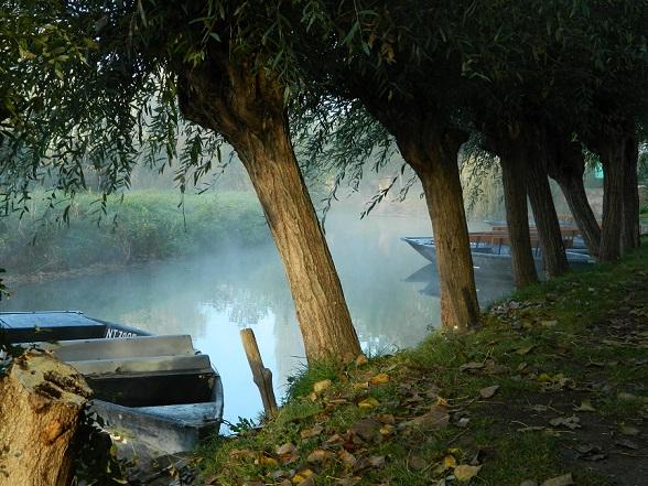Dauw over de kanalen op de vroege ochtend