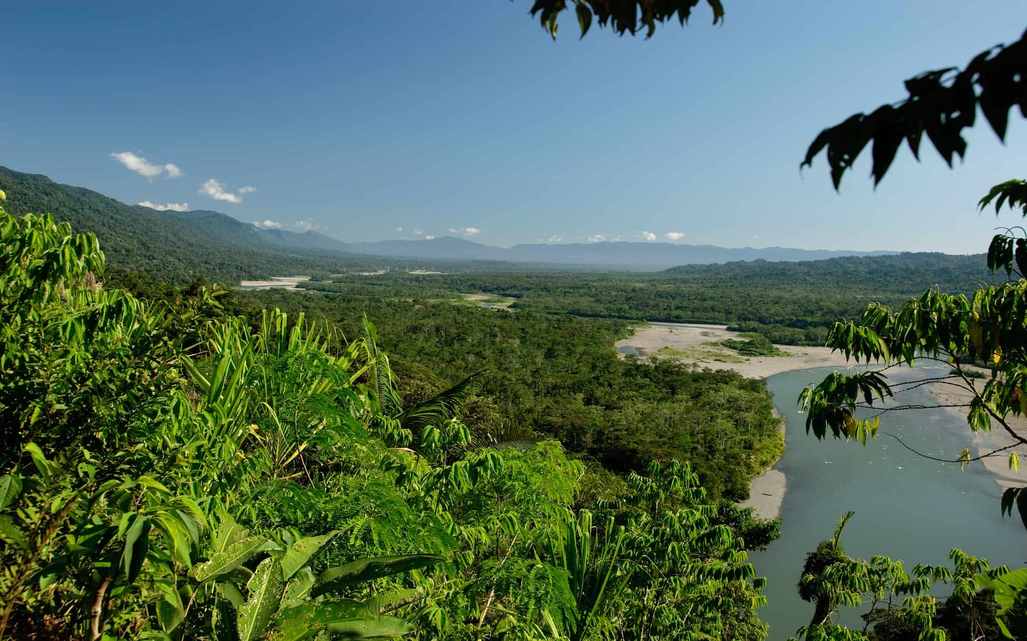 Nationaal Park Manú Peru