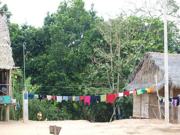 Dagelijks leven Amazone