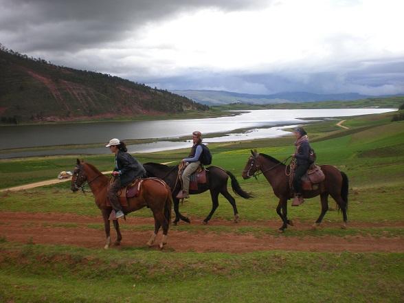 paardrijden Peru
