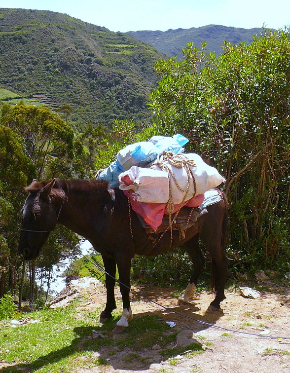 Pakezel Lares Trek naar Machu Picchu