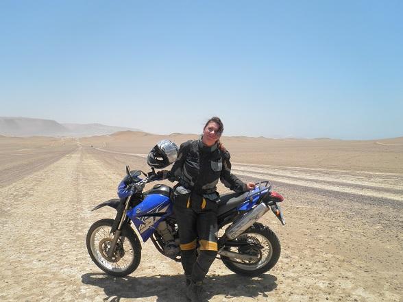 Woestijn van Paracas National Reserve