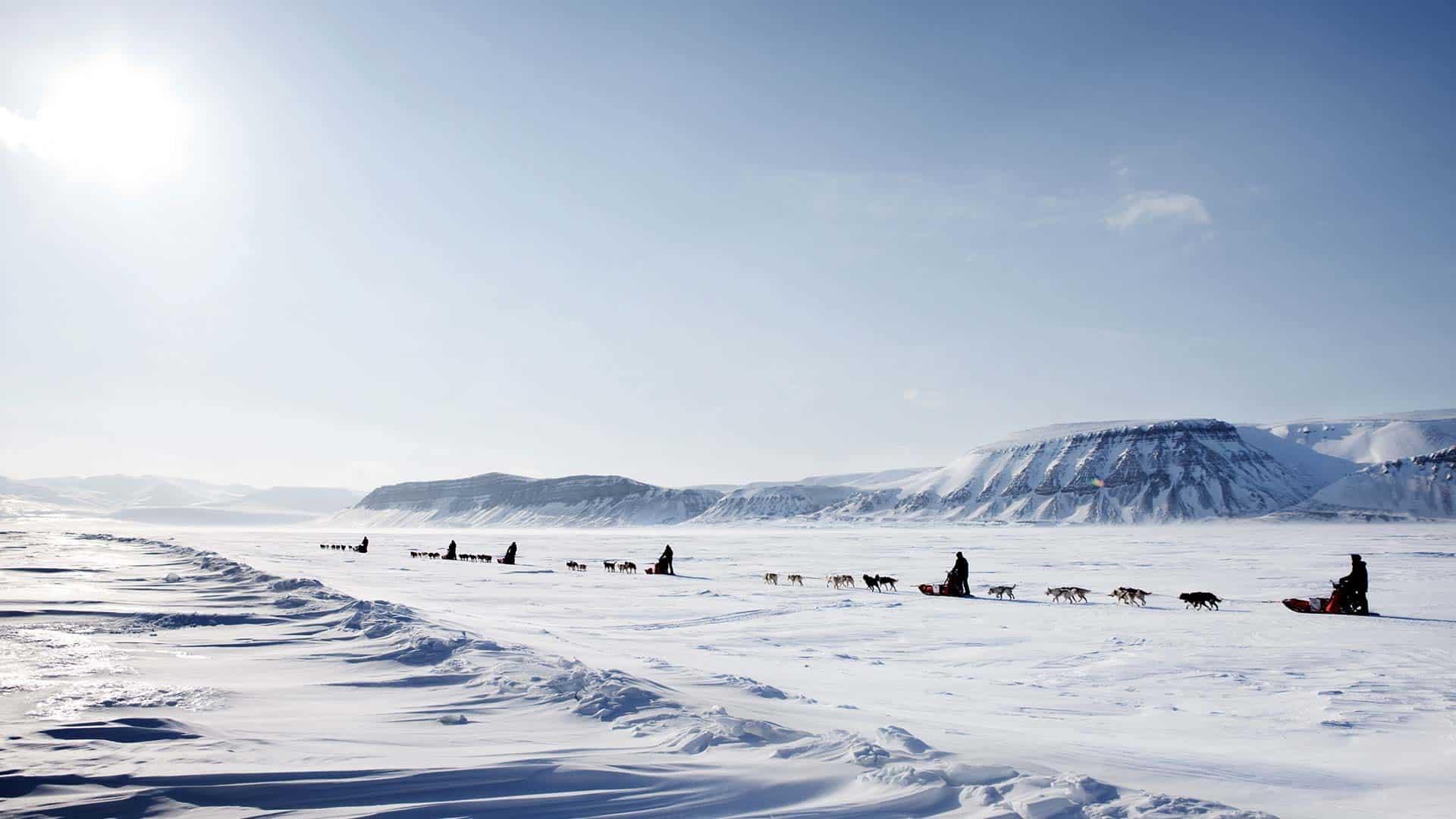 Spitsbergen poolreiziger