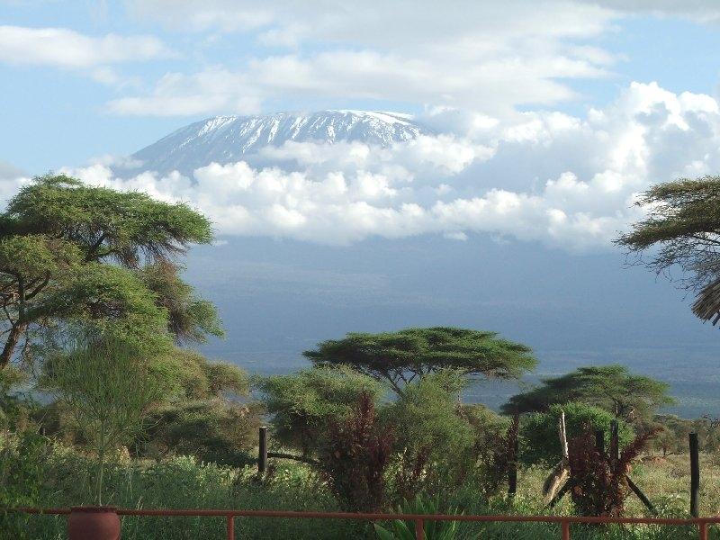 Safari in Amboseli National Park, Kenia