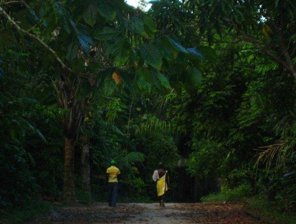 Het Surinaamse binnenland