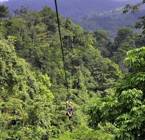 Een Canopy Tour door de nevelwouden van Monteverde kan je niet overslaan bij een reis in Costra Rica!